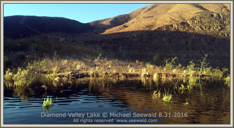 Michael seewald 39 s july to dec 2016 fishing report for Diamond valley fishing report