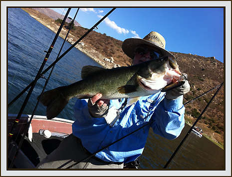 San diego fishing forums view topic couple of pics for Freshwater fishing san diego