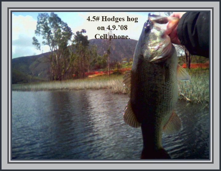Freshwater reports page 219 san diego fishing forums for Freshwater fishing san diego