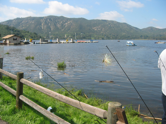 Seewald 39 s bass fishing reports and tips and how to for for Lake hodges fishing report